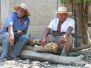 Abril 16 Agua Caliente