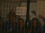 Junio 5 y 6 en el Penal de Santiaguito