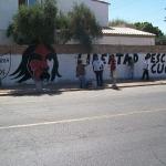 plantoncucapa3